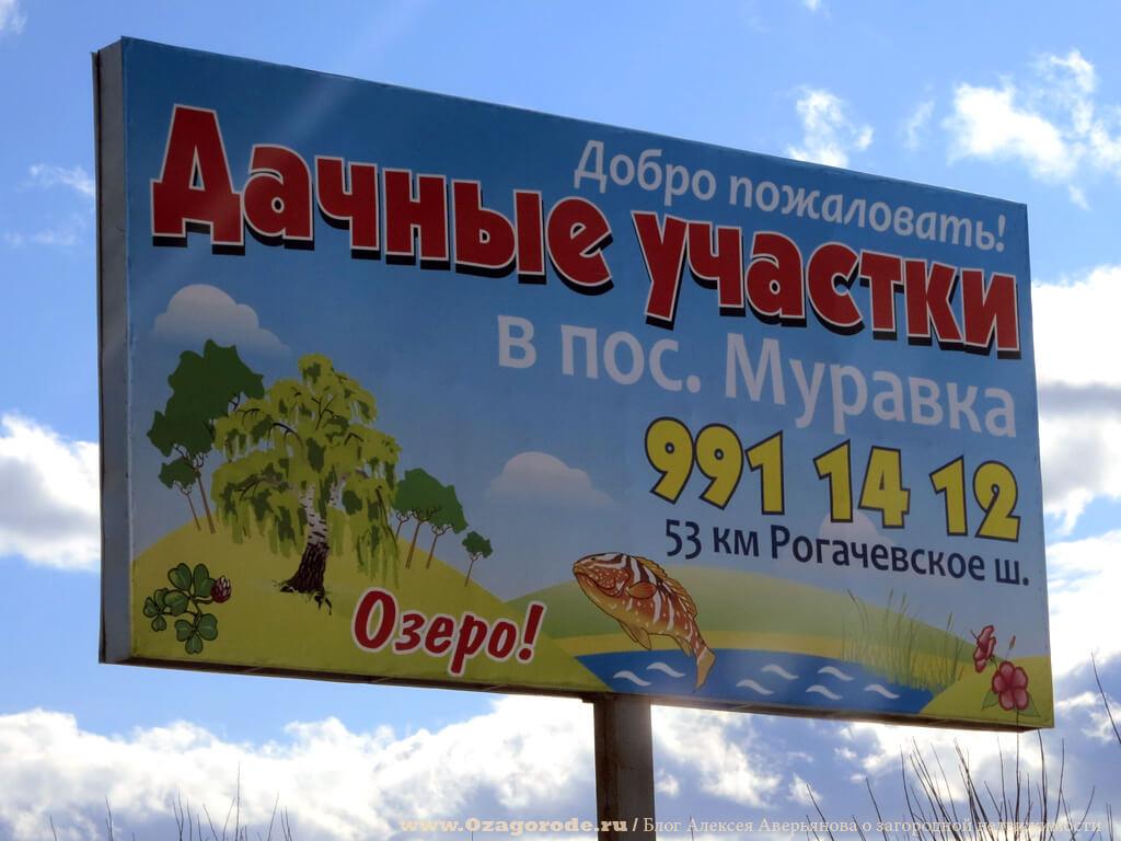 Dachnye-uchastki-poselok-Muravki