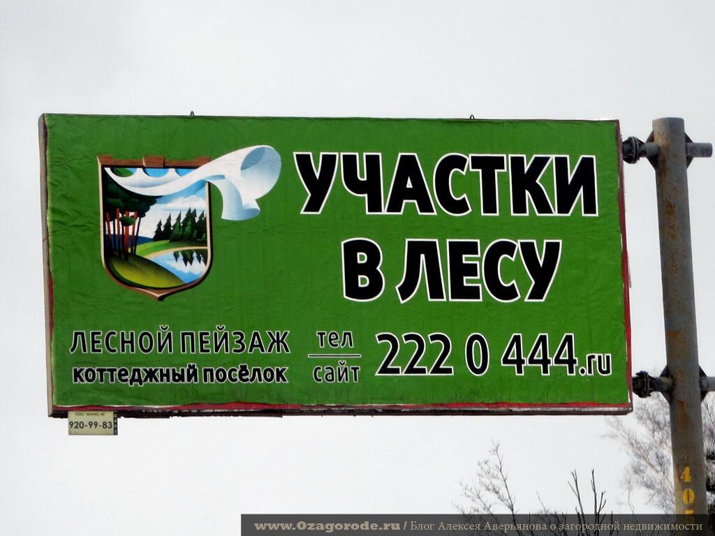 KP-lesnoy-peizazh